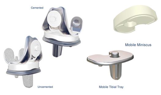 SLK-Evo™ Anatomical Knee System :: Implants International